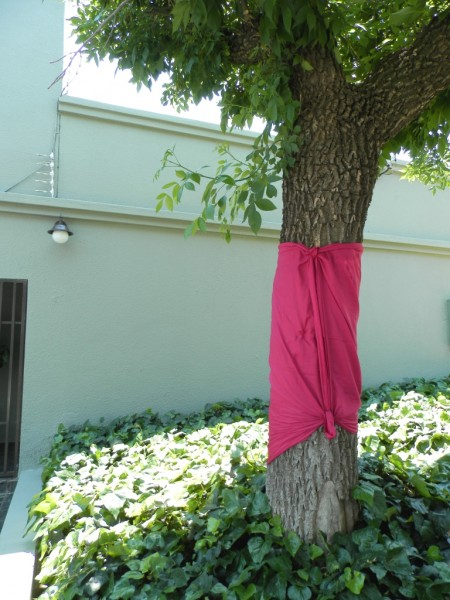 Here's the first tree I wrapped with a friend for Pink Trees for Pauline