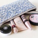 hand luggage cosmetic bag